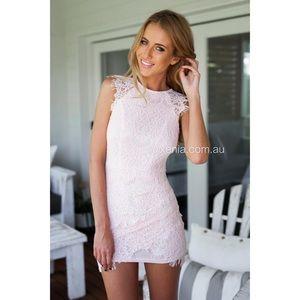 Xenia Light Pink Lace Bodycon Mini Dress
